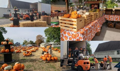 Habitat for Humanitys Annual Pumpkin Patch